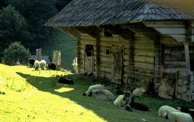 Nature and Adventure in Maramures